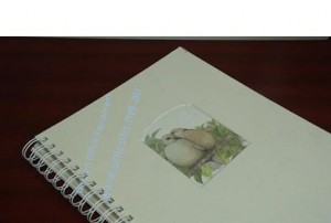 wire binding photo album bound in two to one pitch